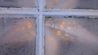 Froststjärna