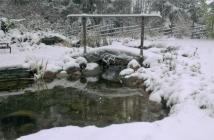 Vinterbro